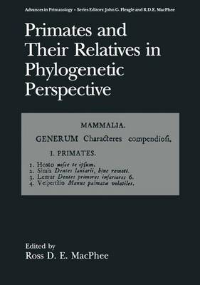 Primates and Their Relatives in Phylogenetic Perspective - Advances in Primatology (Hardback)
