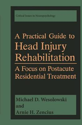 A Practical Guide to Head Injury Rehabilitation: A Focus on Postacute Residential Treatment - Critical Issues in Neuropsychology (Hardback)