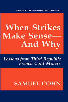 When Strikes Make Sense-And Why: Lessons from Third Republic French Coal Miners - Springer Studies in Work and Industry (Hardback)