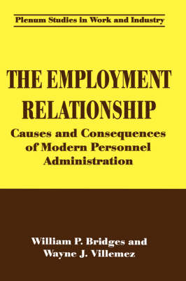 The Employment Relationship: Causes and Consequences of Modern Personnel Administration - Springer Studies in Work and Industry (Hardback)