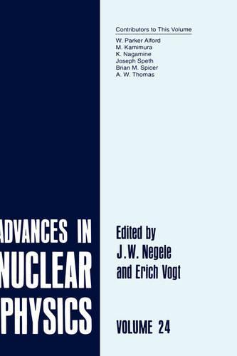 Advances in Nuclear Physics: Volume 22 - Advances in Nuclear Physics 22 (Hardback)