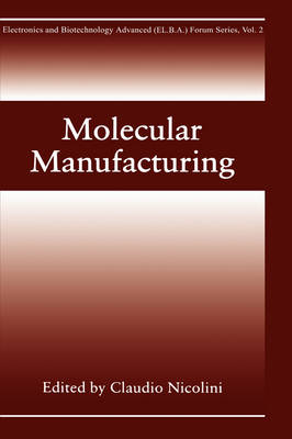 Molecular Manufacturing - Electronics and Biotechnology Advanced (Elba) Forum Series 2 (Hardback)