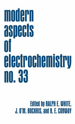 Modern Aspects of Electrochemistry - Modern Aspects of Electrochemistry 33 (Hardback)