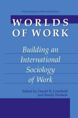 Worlds of Work: Building an International Sociology of Work - Springer Studies in Work and Industry (Hardback)