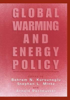 Global Warming and Energy Policy (Hardback)