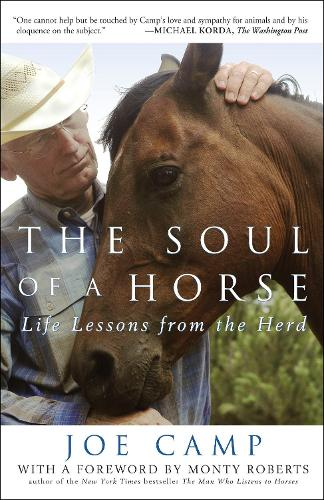 The Soul Of A Horse (Paperback)