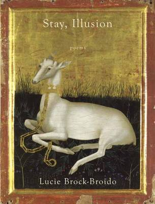 Stay, Illusion (Paperback)