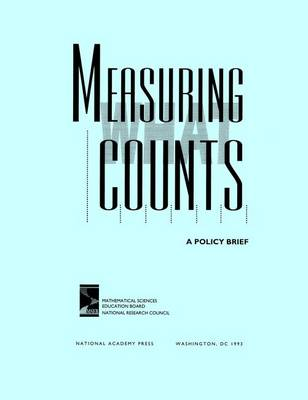 Measuring What Counts: A Policy Brief (Paperback)