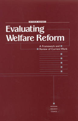 Evaluating Welfare Reform: A Framework and Review of Current Work, Interim Report (Paperback)