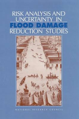 Risk Analysis and Uncertainty in Flood Damage Reduction Studies (Paperback)