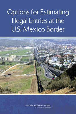 Options for Estimating Illegal Entries at the U.S.-Mexico Border (Paperback)