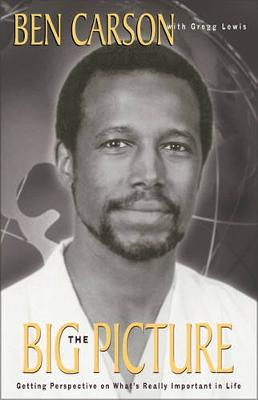 The Big Picture: Getting Perspective on What's Really Important (Paperback)