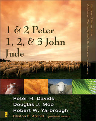 1 and 2 Peter, Jude, 1,2, and 3 John - Zondervan Illustrated Bible Backgrounds Commentary No. 14 (Paperback)