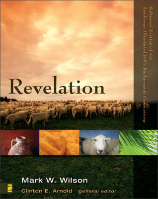 Revelation - Zondervan Illustrated Bible Backgrounds Commentary No. 22 (Paperback)