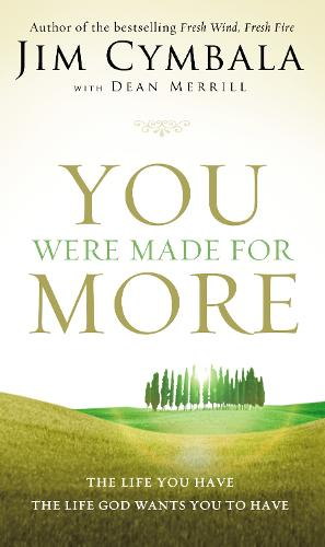 You Were Made for More: The Life You Have, the Life God Wants You to Have (Paperback)
