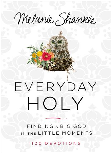 Everyday Holy: Finding a Big God in the Little Moments (Hardback)