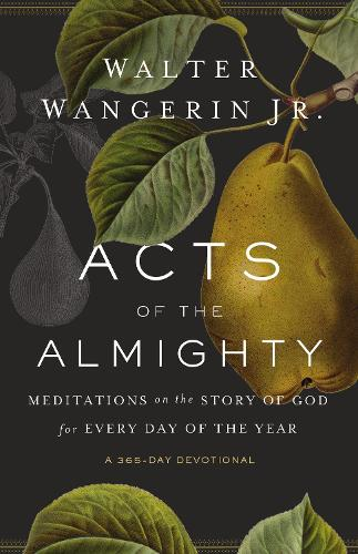 Acts of the Almighty: Meditations on the Story of God for Every Day of the Year (Paperback)