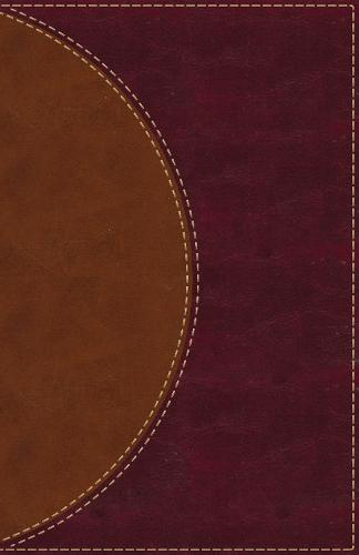 Amplified Reading Bible, Leathersoft, Brown, Thumb Indexed: A Paragraph-Style Amplified Bible for a Smoother Reading Experience (Leather / fine binding)
