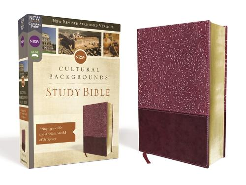 NRSV, Cultural Backgrounds Study Bible, Leathersoft, Burgundy, Comfort Print: Bringing to Life the Ancient World of Scripture (Leather / fine binding)