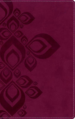 King James Version Bible for Teens (Leather / fine binding)