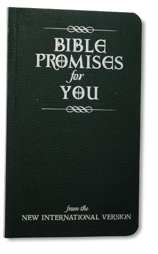 Bible Promises for You: from the New International Version (Paperback)
