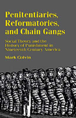 Penitentiaries, Reformatories, and Chain Gangs: Social Theory and the History of Punishment in Nineteenth-Century America (Paperback)