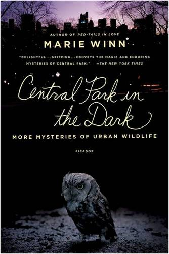 Central Park in the Dark: More Mysteries of Urban Wildlife (Paperback)