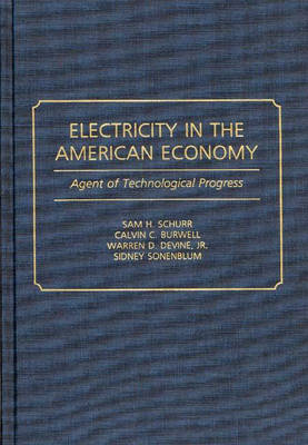 Electricity in the American Economy: Agent of Technological Progress (Hardback)