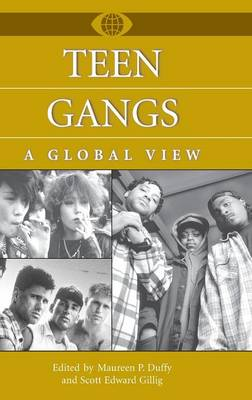 Teen Gangs: A Global View - A World View of Social Issues (Hardback)