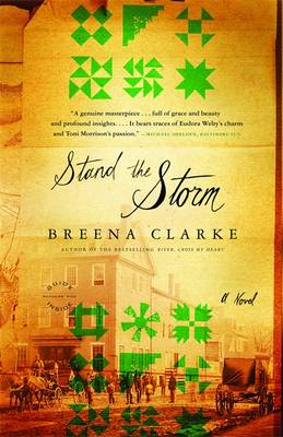 Stand The Storm (Paperback)