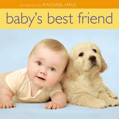 Baby's Best Friend (Hardback)