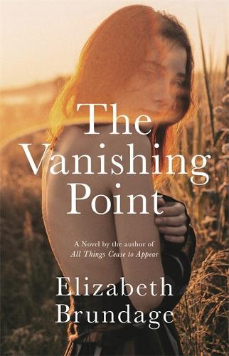 The Vanishing Point: A Novel (Hardback)