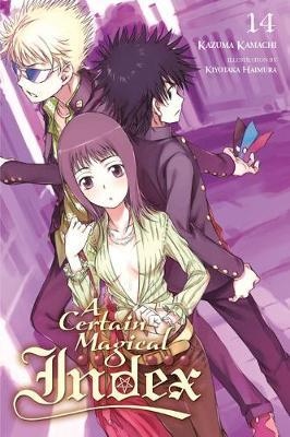 A Certain Magical Index, Vol. 14 (light novel) (Paperback)