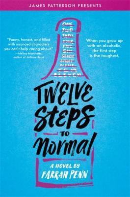 Twelve Steps to Normal (Paperback)