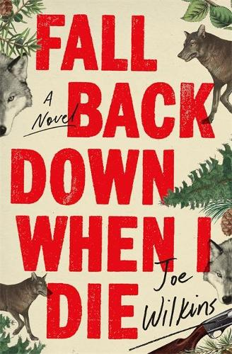 Fall Back Down When I Die (Paperback)