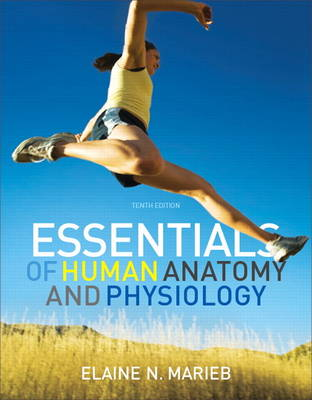 Essentials of Human Anatomy and Physiology with Essentials of Interactive Physiology CD-ROM: United States Edition