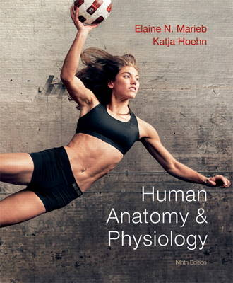 Human Anatomy & Physiology (Hardback)