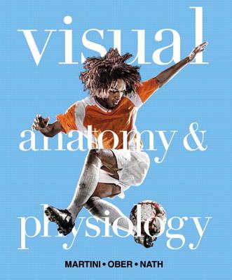 Visual Anatomy & Physiology (Hardback)