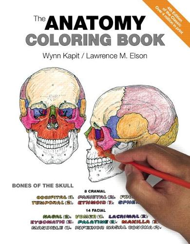 Anatomy Coloring Book, The (Paperback)
