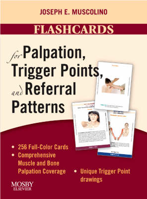 Flashcards for Palpation, Trigger Points, and Referral Patterns