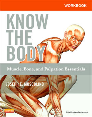 Workbook for Know the Body: Muscle, Bone, and Palpation Essentials (Paperback)