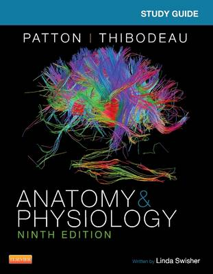 Study Guide for Anatomy & Physiology (Paperback)