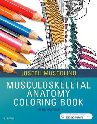 Anatomy Coloring Book 3rd Edition : Musculoskeletal Anatomy Coloring Book by Joseph E. Muscolino Waterstones