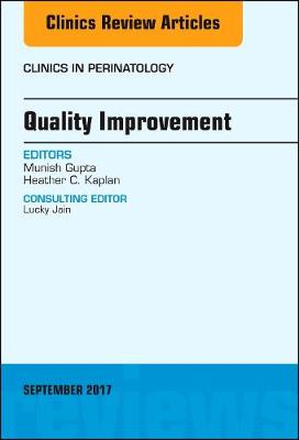 Quality Improvement, An Issue of Clinics in Perinatology - The Clinics: Internal Medicine 44-4 (Hardback)