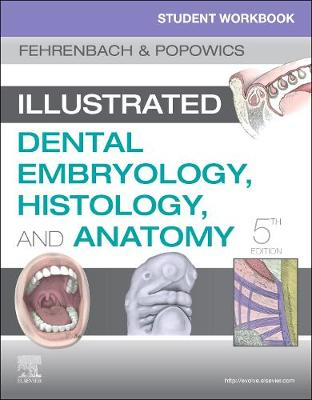 Student Workbook for Illustrated Dental Embryology, Histology and Anatomy (Paperback)