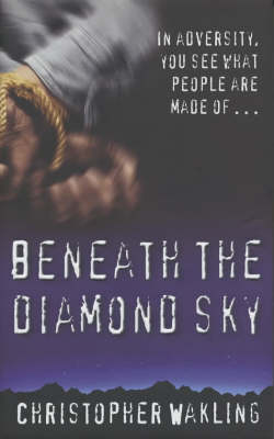 Beneath the Diamond Sky (Paperback)