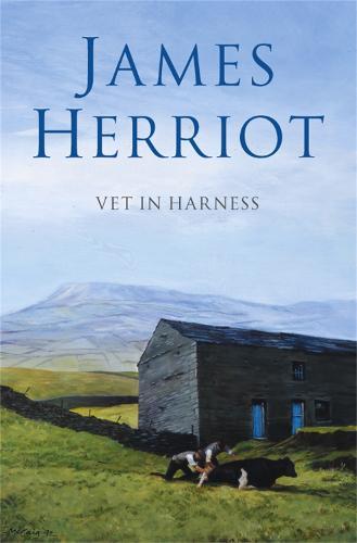 Vet in Harness (Paperback)