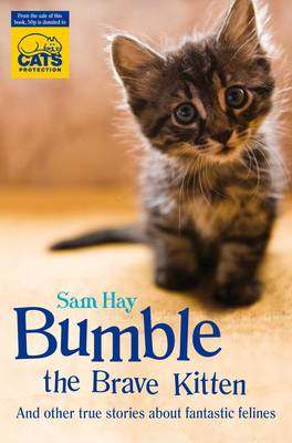 Bumble the Brave Kitten: In Association with Cats Protection (Paperback)