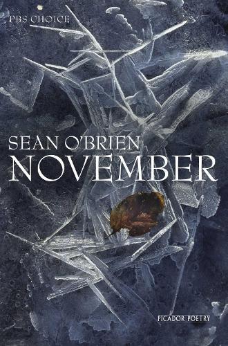November (Paperback)