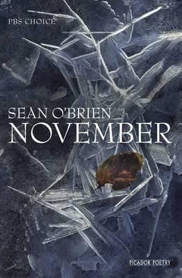 November (Hardback)